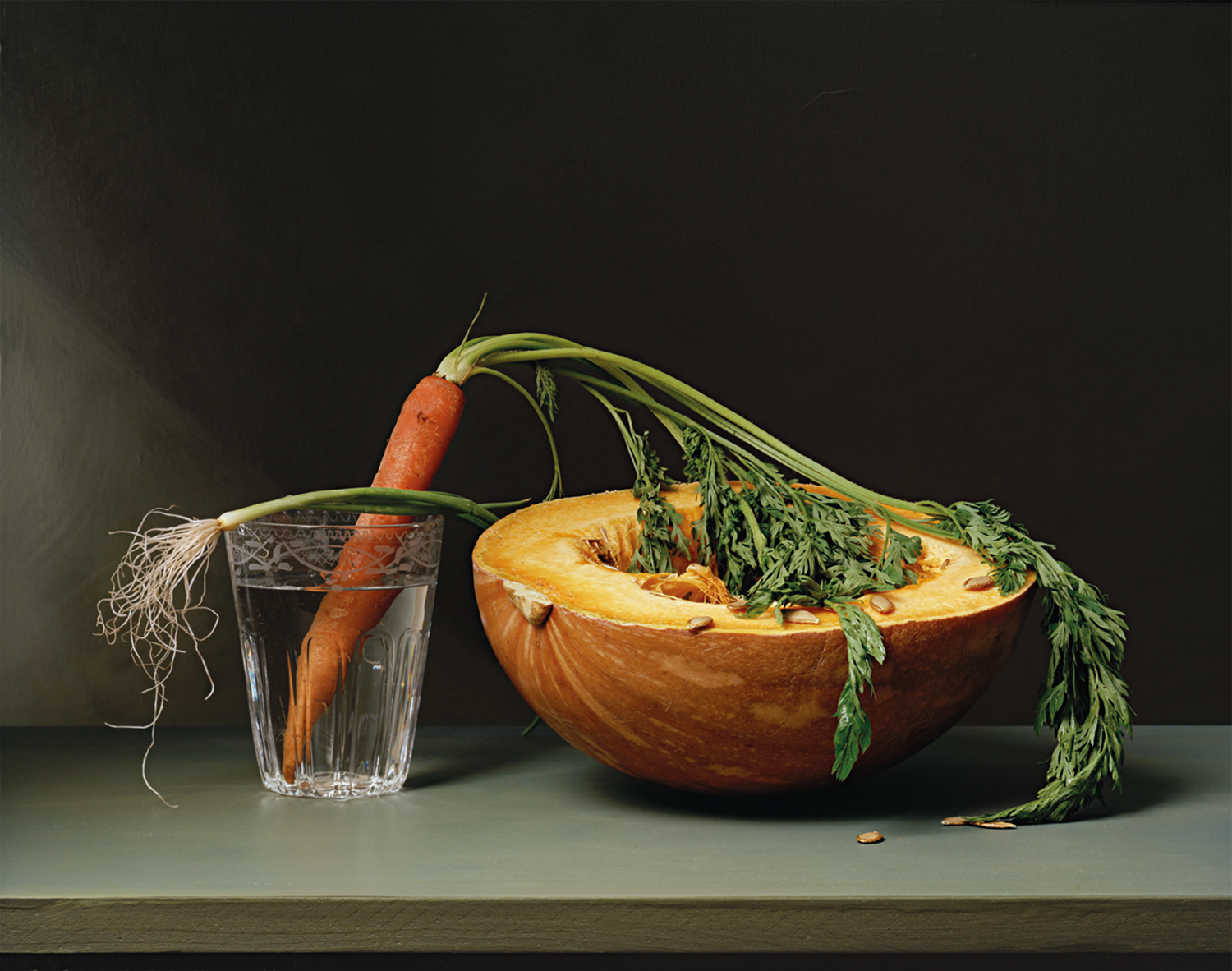 Plate 27 - Carrot and Squash