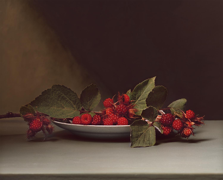 Plate 30 - Wild Raspberries