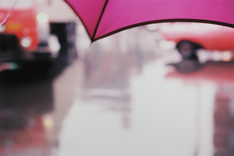 Purple Umbrella, 1950s