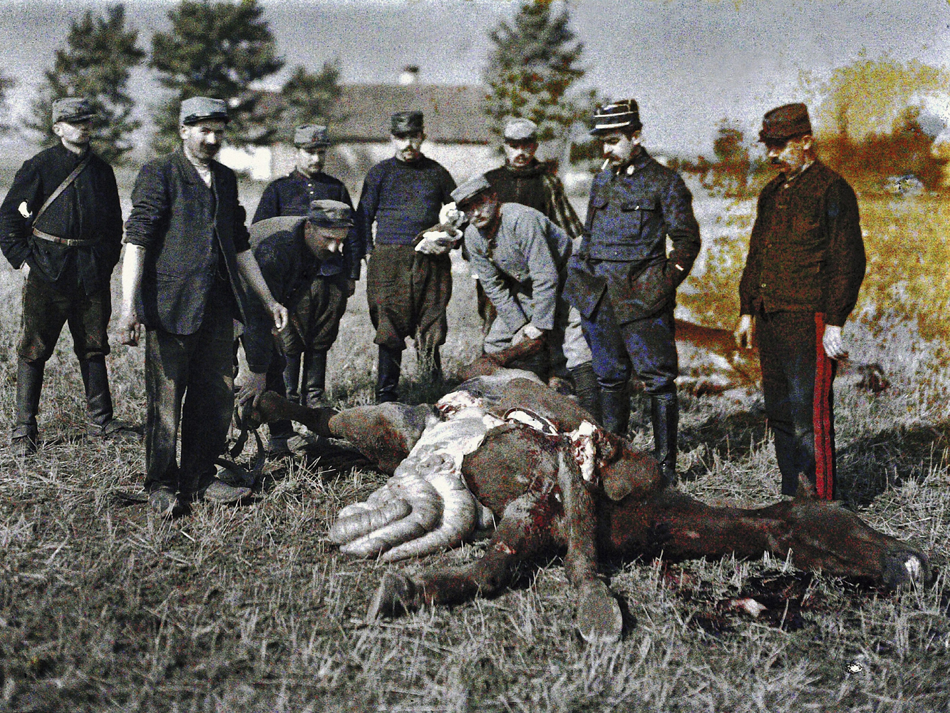 Nine French soldiers investigate a fatally injured horse on the Western Front.