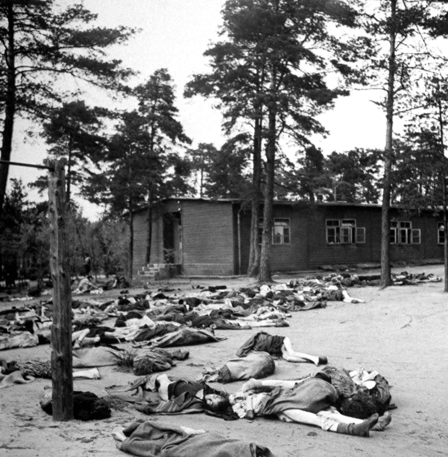 Corpses cover the ground at the Bergen-Belsen concentration camp, 1945.