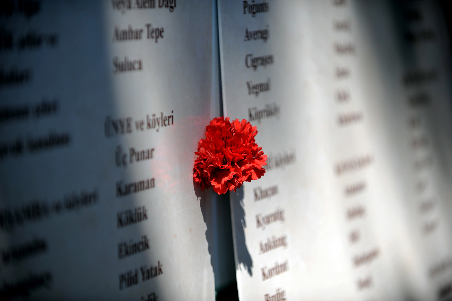 April 24, 2013. A carnation is placed between lists of names during a demonstration on in Istanbul marking the 98th anniversary of the massacre and deportation of Ottoman Armenians during World War I. Armenians claim that around 1.5 million people died and the masacare is described by many countries as genocide although Ankara continues to reject the term.