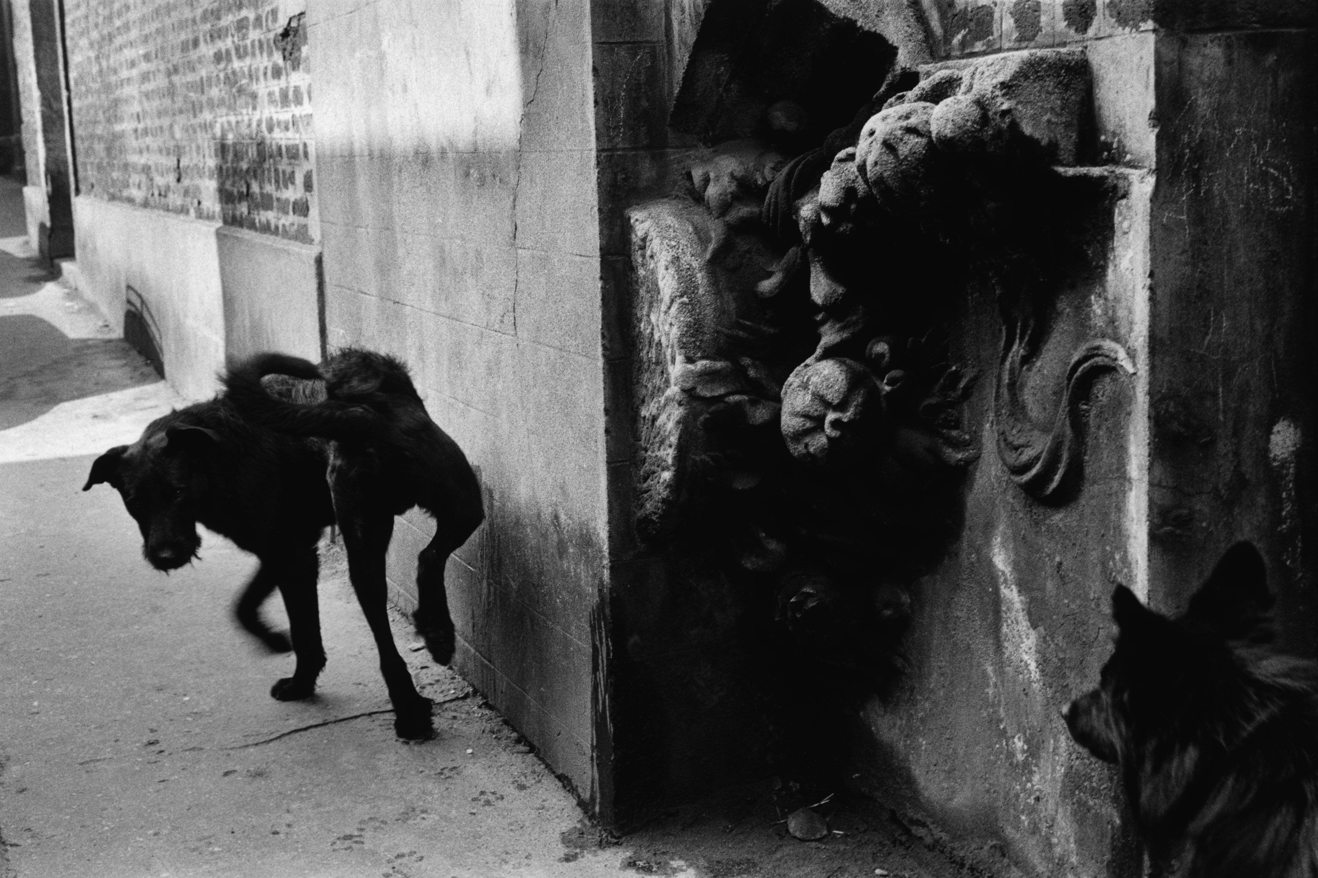 The  La Ruche  artists' village in Montmartre, Paris, 1959.