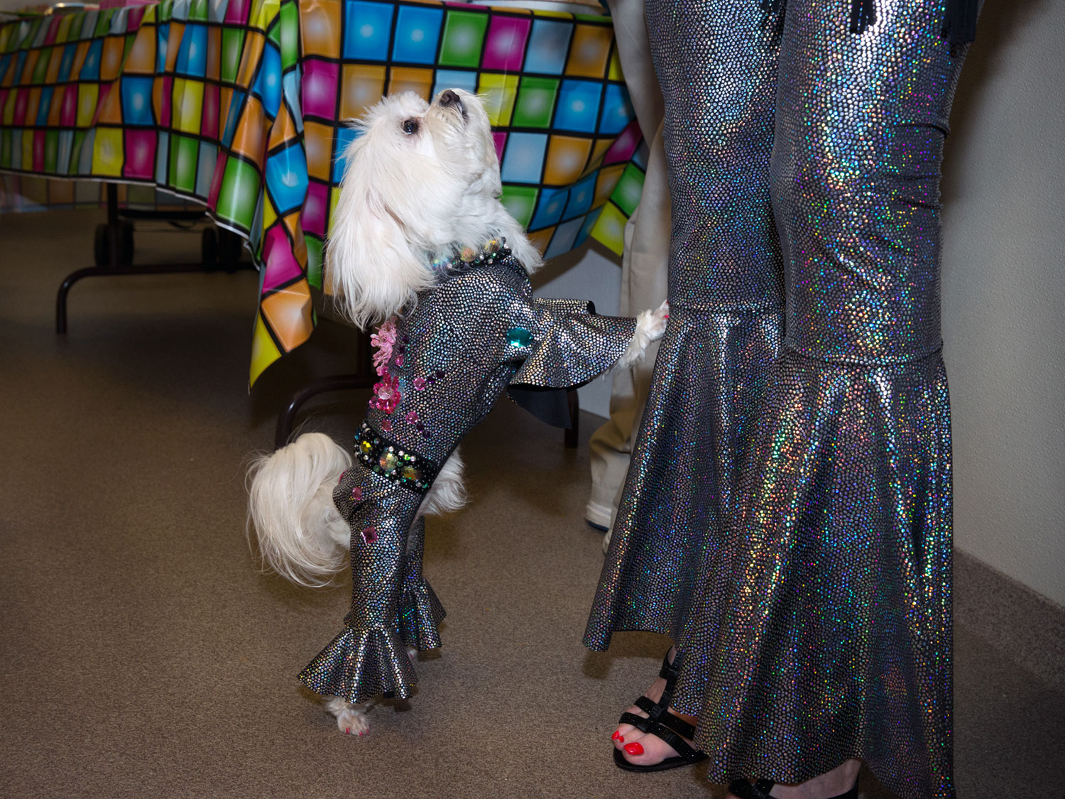 ZZ wearing a custom made jumpsuit designed by Olga Yuditsky to match Ilene's outfit for her disco themed birthday party.