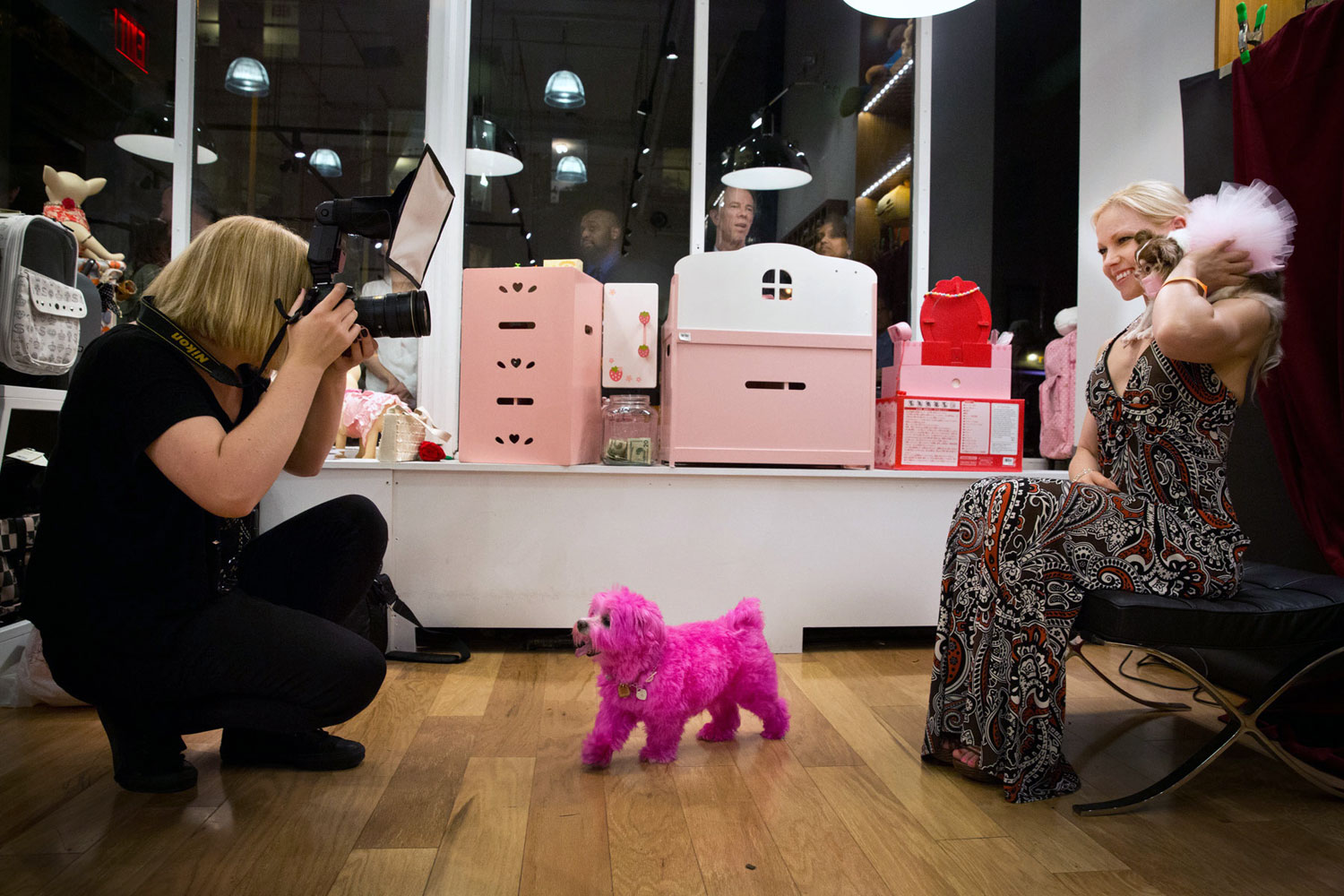 Sophie Gamand of Striking Paws Pet Photography photographs Summer Strand and her Chihuahua, Angel Song, at the Senior Soiree Benefit for K9Kastle hosted by City Dog Expert and Han Nari & MG. The happy pink dog, Franky, companion to Gina Agnello, runs wild.