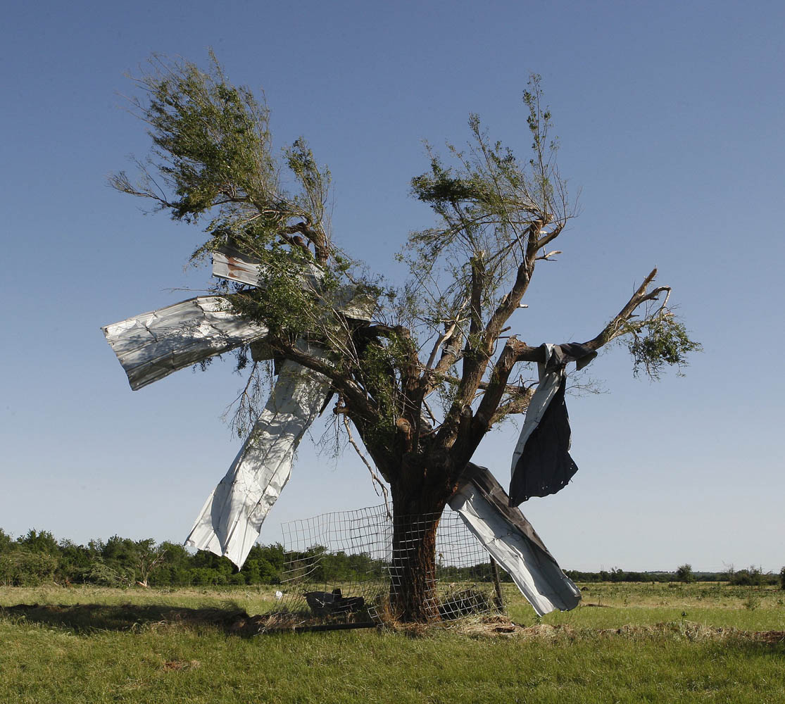 June 1, 2013. Sheet metal is pictured stuck in a tree along Route 66 in El Reno, Okla. Nine people were killed in tornadoes that swept through central Oklahoma on Friday, part of a storm system that caused widespread flooding in Oklahoma City and its suburbs, the state's chief medical examiner said on Saturday.