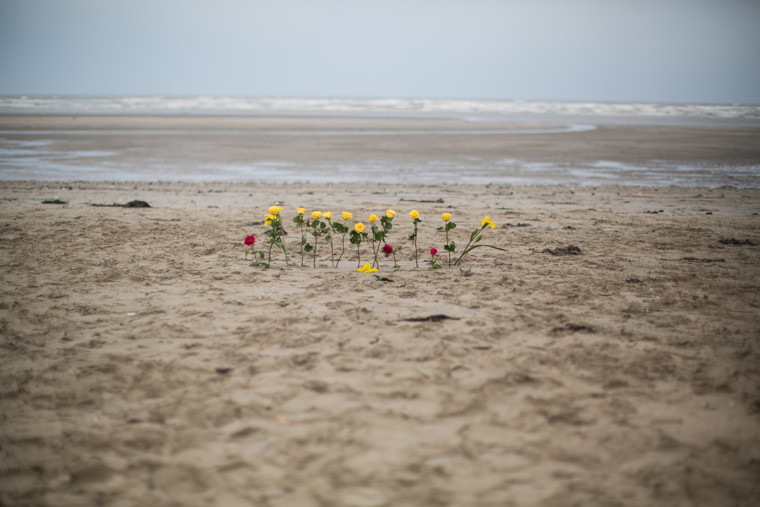 June 5, 2013. Flowers are left on the shore to remembers fallen soldiers for the 69th anniversary of D Day on Utah beach, Saint mere du mont, France.