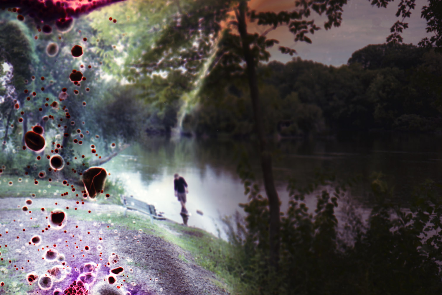 Untitled #9,  2010; from the series Fox River Derivatives.  I wanted to lose control,  Hoffman says. He used water to extinguish the fire before the negatives had entirely disappeared.