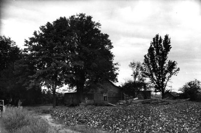 The site of Emmett Till's kidnapping, Money, Miss., 1955.