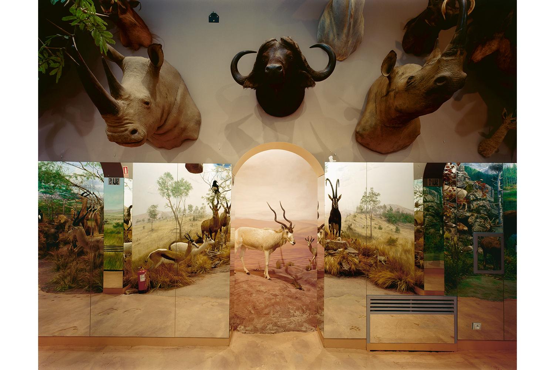 Museum of Wild Fauna, Boñar, Spain, 2006