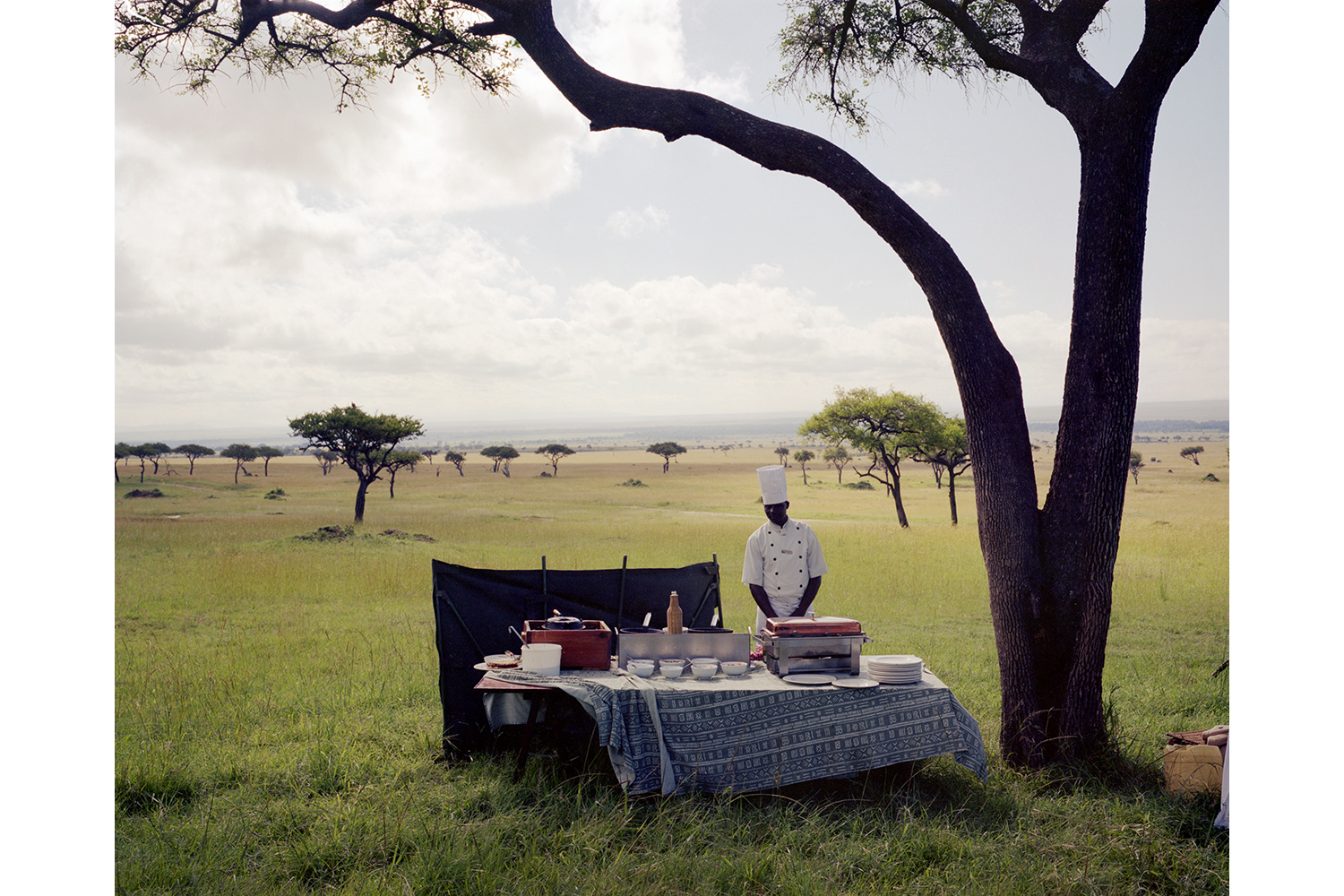 A chef from a nearby luxury lodge waits for his guests to arrive from an air balloon excursion, for a champagne bush breakfast in the middle of Kenya's Masai Mara game reserve. 2012