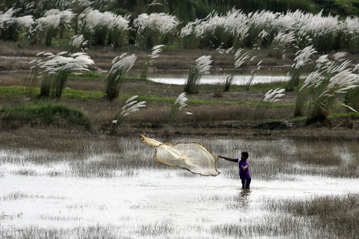 Sept. 21, 2013. A villager throws his fishing net into giant rainwater puddles on the banks of the Kuakhai River on the outskirts of Bhubaneswar, India.