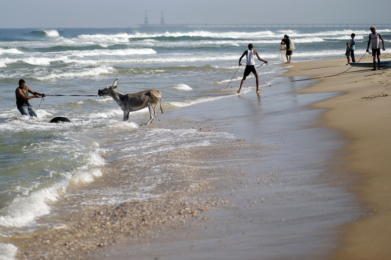 Sept. 26, 2013. A Palestinian man pulls a donkey into the sea for a wash in Gaza.
