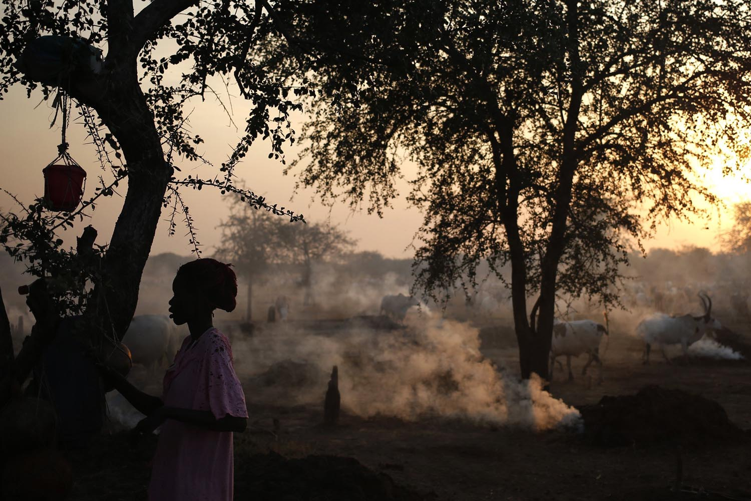 A woman from the Dinka Ngok cattle-herding tribe stands in a cattle camp, near the town of Abyei, Oct. 30, 2013.