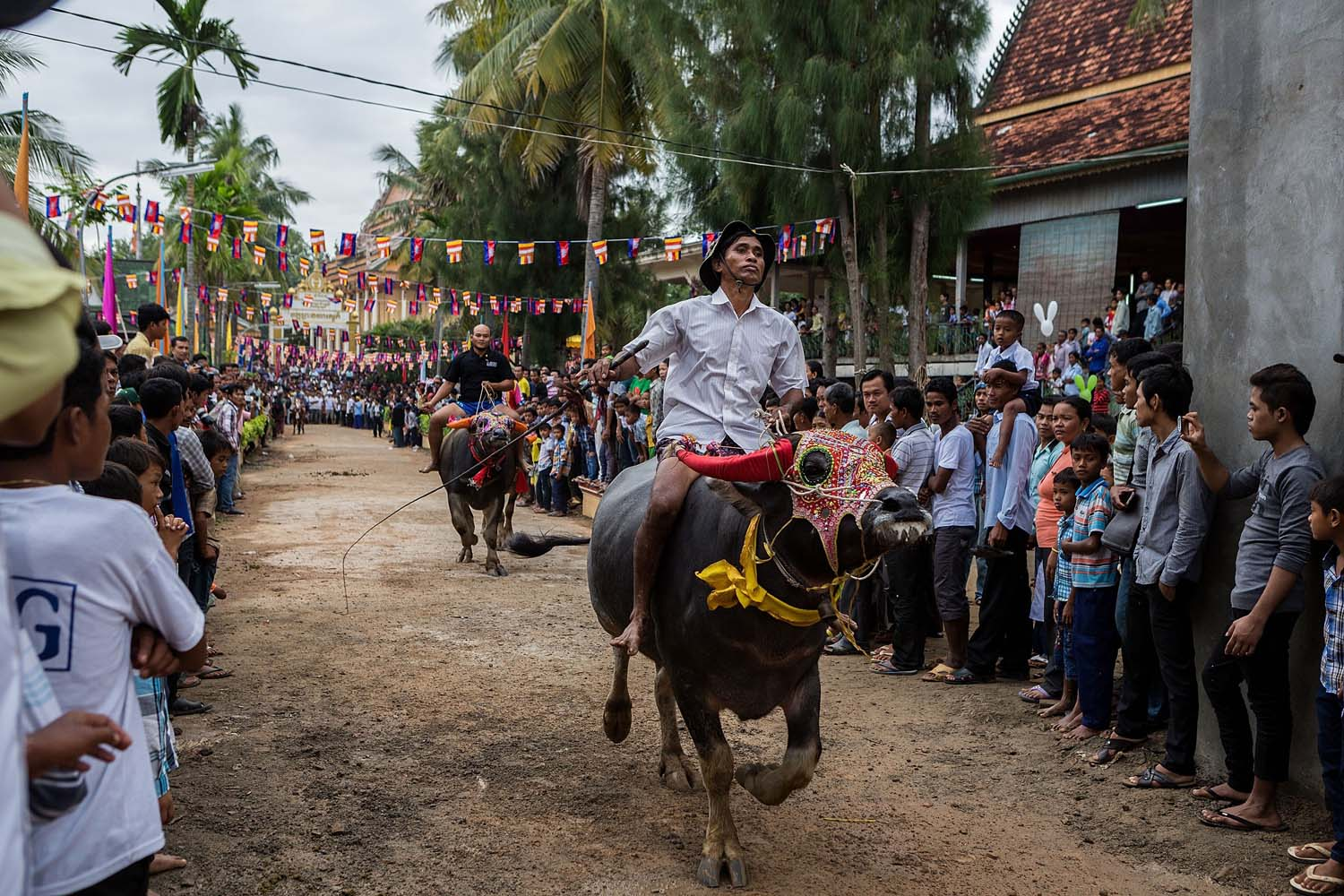 Oct. 4, 2013. Buffalo riders compete during the annual Viear Sour races held as part of the Festival of the Dead in Vihear Sour, Cambodia.