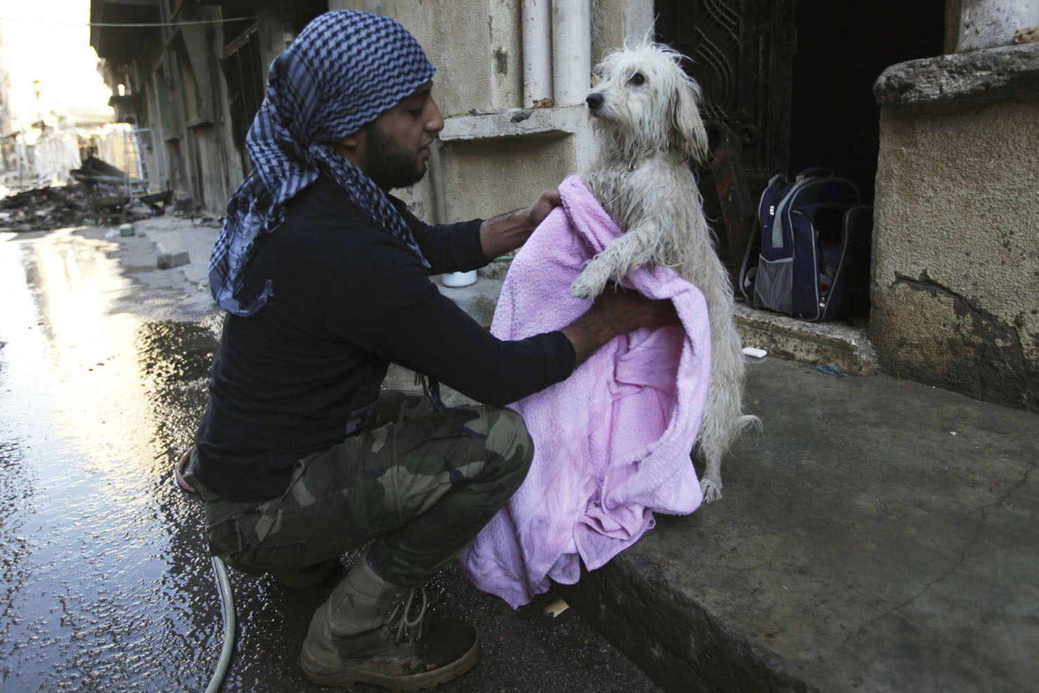 Oct. 6, 2013. A Free Syrian Army fighter dries a dog after giving it a wash in Deir al-Zor.