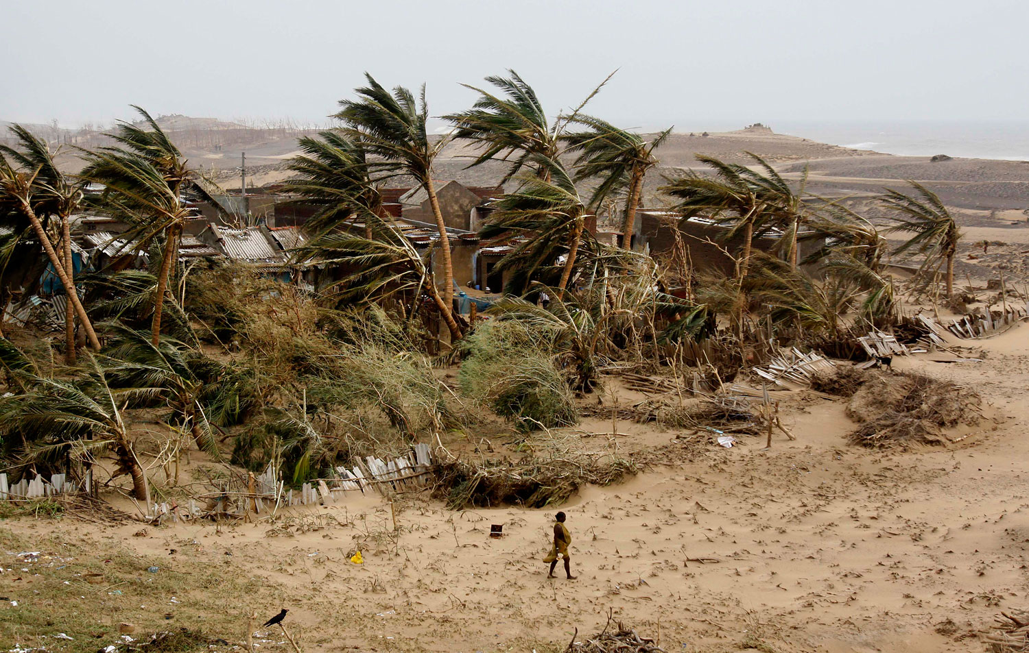 A woman returns to the cyclone hit Arjipalli village on the Bay of Bengal coast in Ganjam district, Orissa state, India.