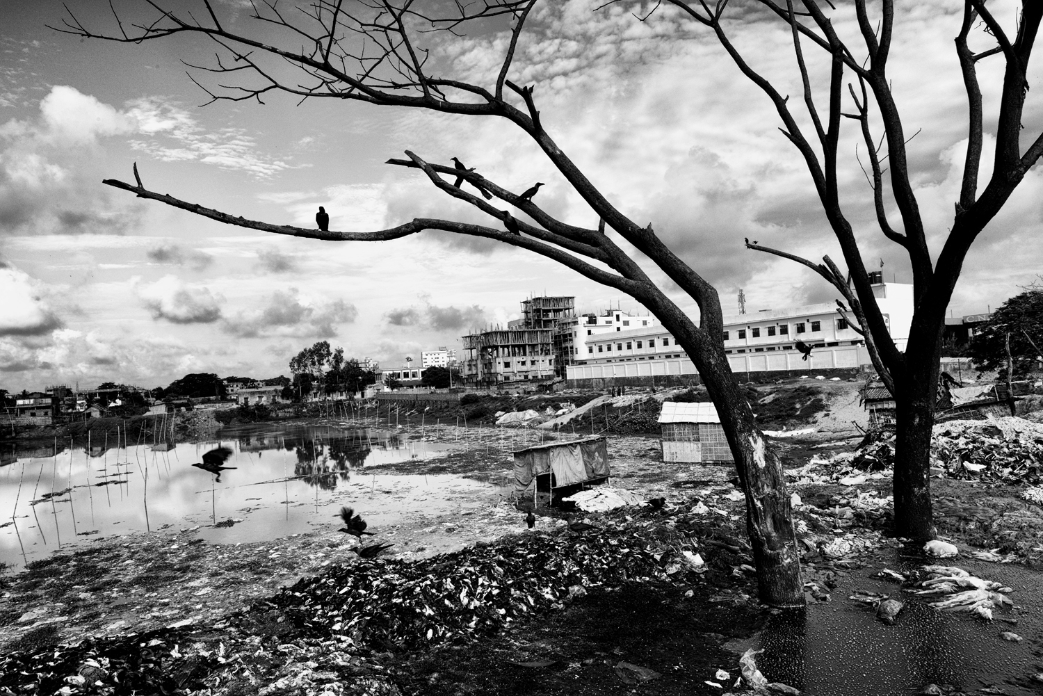 The pollution caused by tanneries killed any kind of life in the lake, Hazaribagh, Dhaka, Bangladesh.