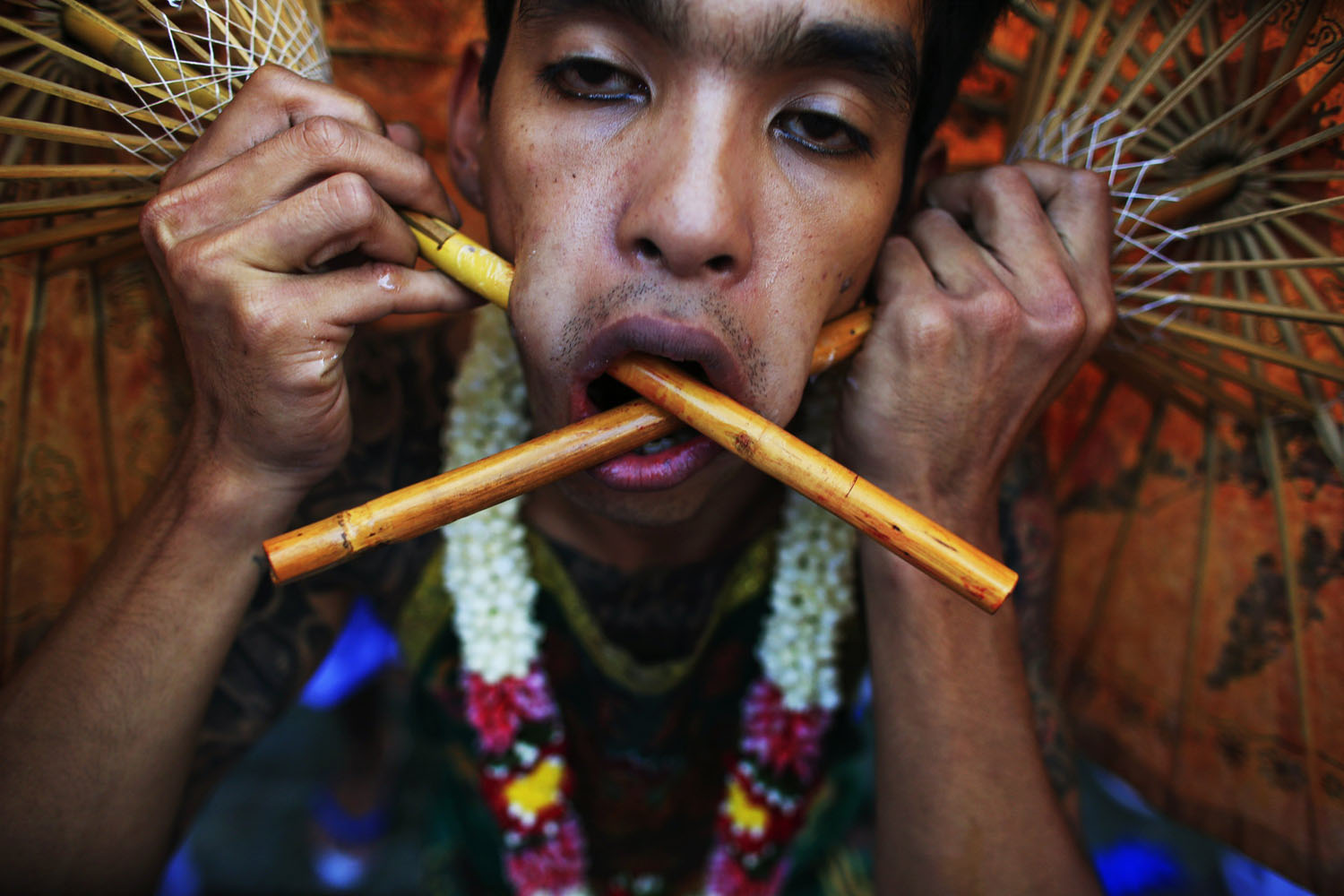 Oct. 11, 2013. A devotee of the Chinese Jui Tui Shrine, with two umbrellas pierced through his cheeks, takes part in a street procession during the annual vegetarian festival in Phuket, Thailand.