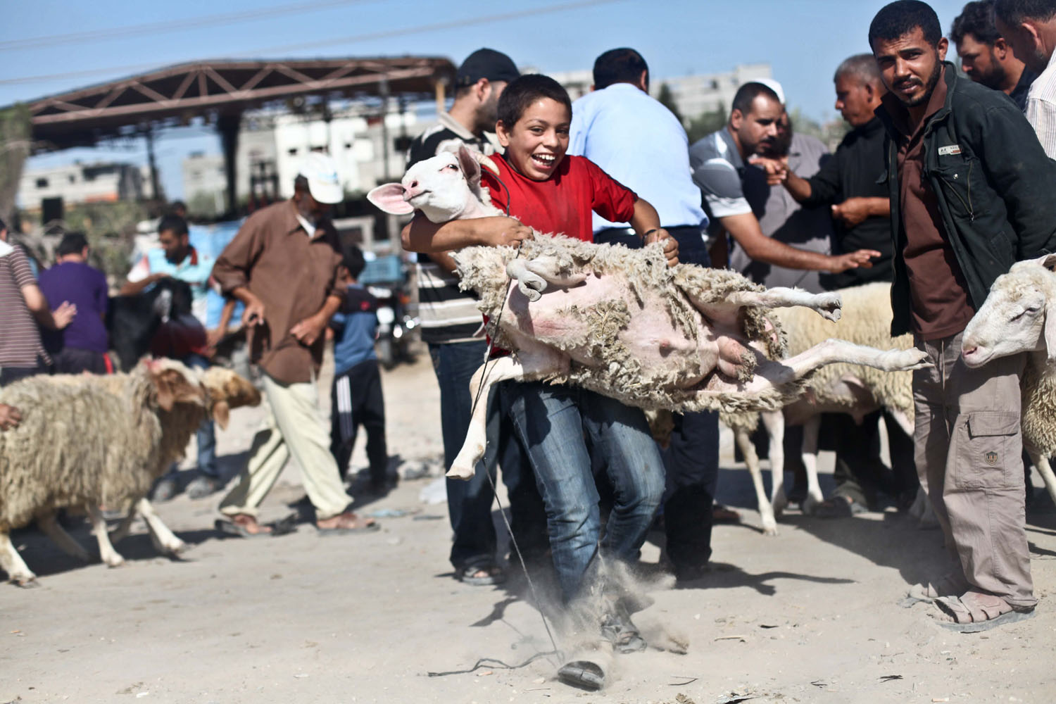 Oct. 11, 2013. Palestinians trade goats at a local cattle market ahead of Muslim festival of Eid al-Adha, in Gaza city.