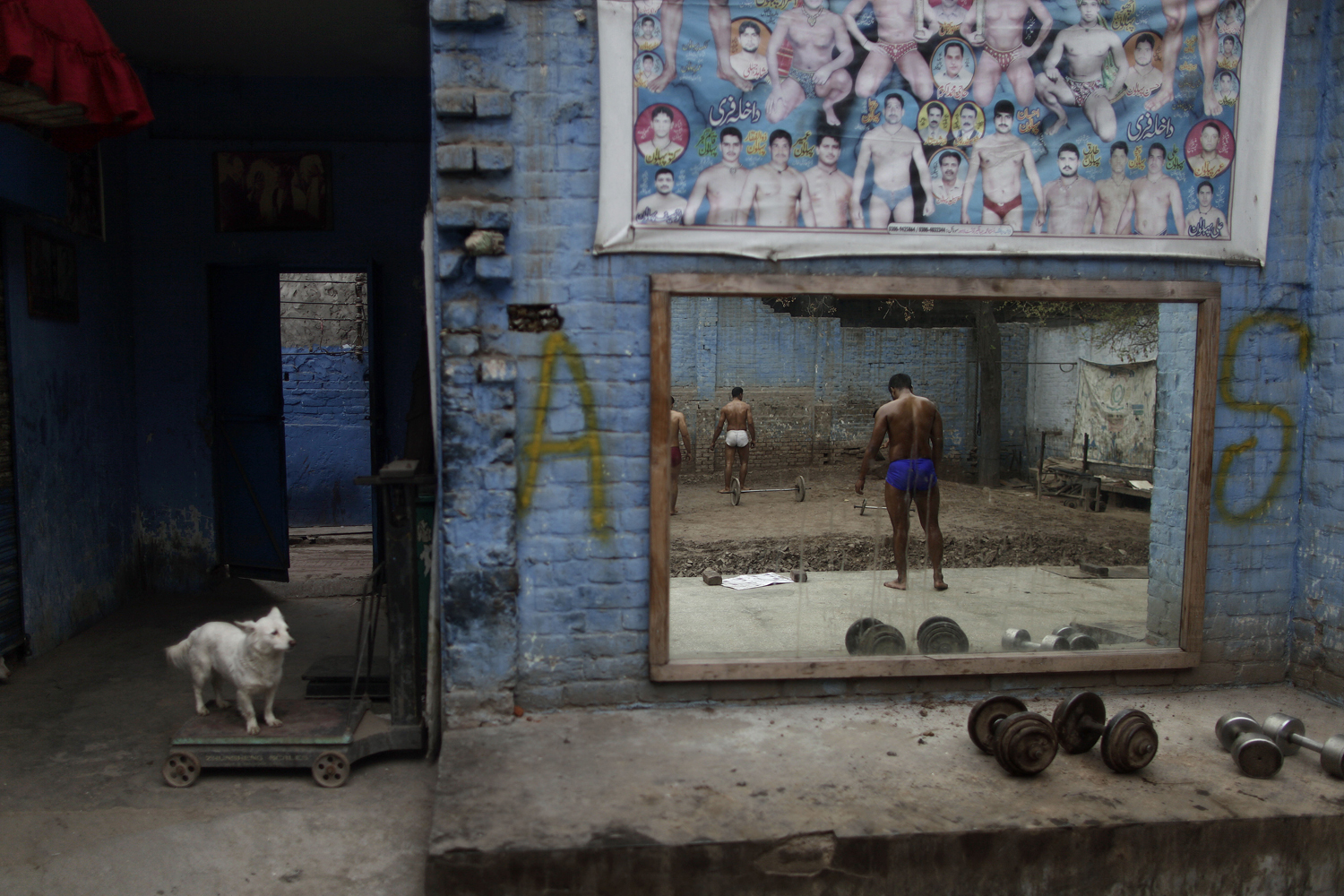 Feb. 26, 2013. A dog looks at Pakistani Kushti wrestlers, right, reflected on a mirror, as they attend their daily training session in Lahore, Pakistan.