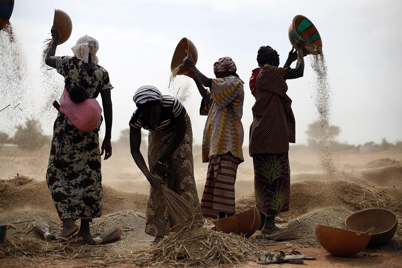 Jan. 22, 2013. Malian women sift wheat in a field near Segou, central Mali.