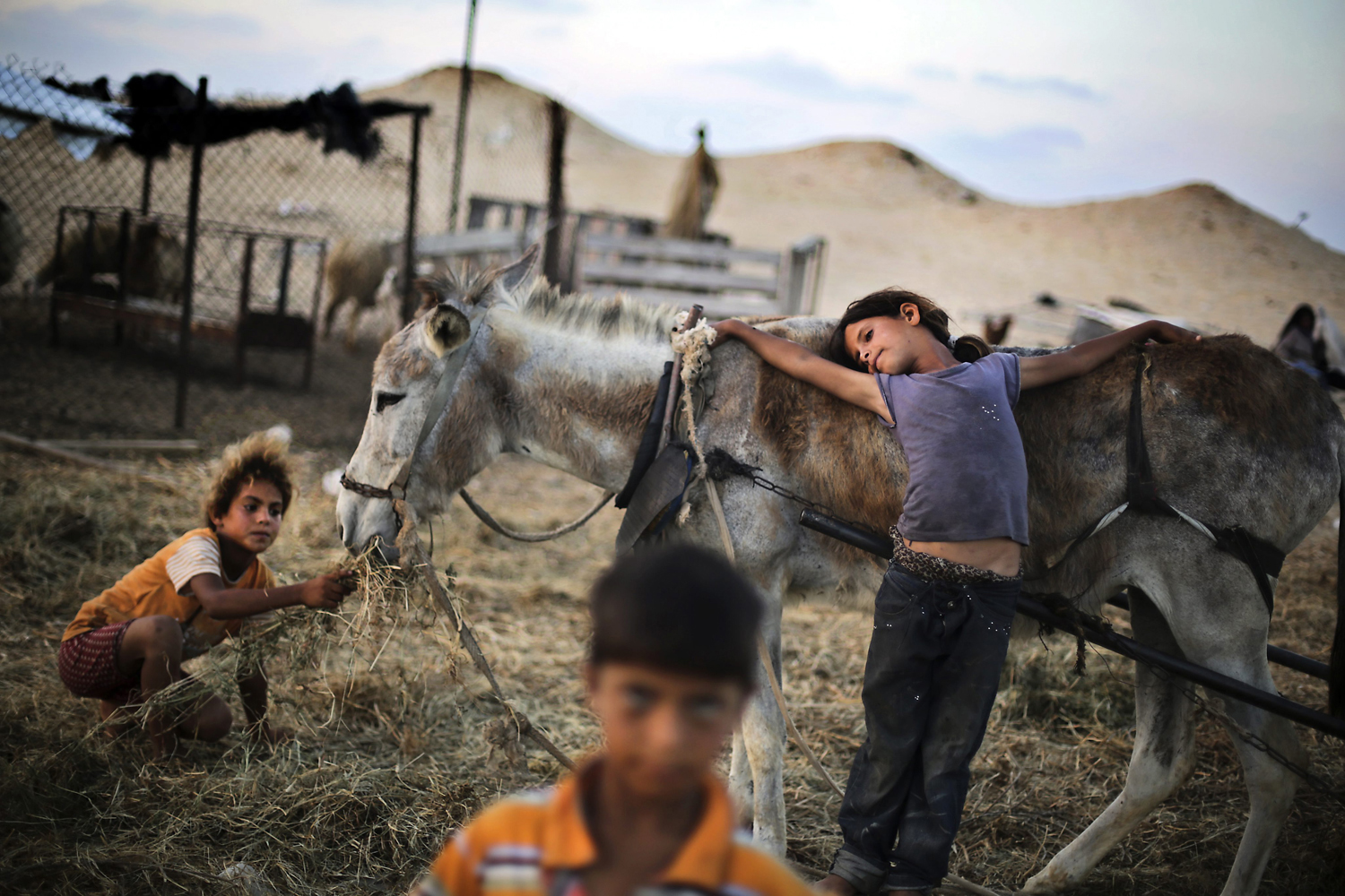 June 26, 2013. Palestinian children play outside their family's tent in a poverty-stricken quarter of the town of Younis, in the southern Gaza Strip.