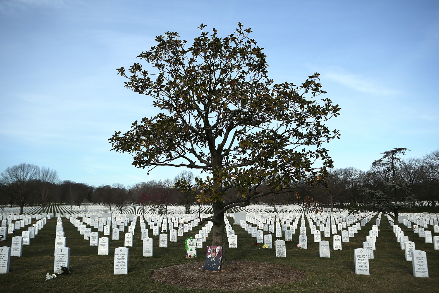 March 15, 2013. A portrait of U.S. Army Sgt. Alessandro L. Plutino rests at the base of a tree in Section 60 at Arlington National Cemetery in Arlington, Va.