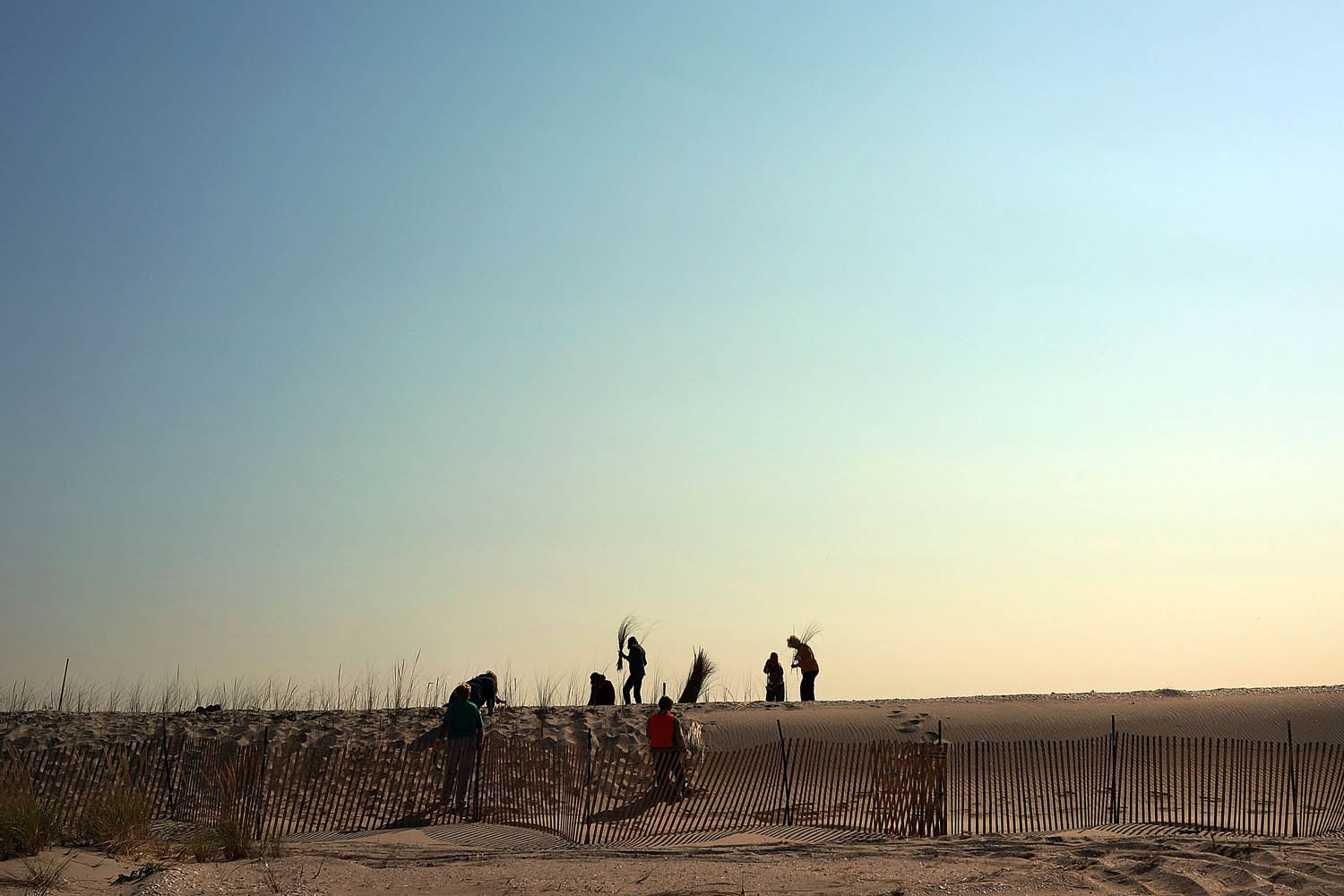 Oct. 29, 2013. Residents plant beach grass on protective sand dunes in the Breezy Point neighborhood on the one-year anniversary of Hurricane Sandy in the Queens borough of New York City.