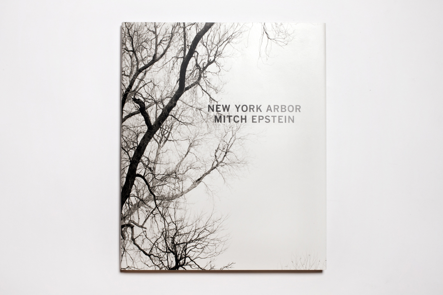 New York Arbor by Mitch Epstein, published by Steidl, selected by Phillip Block, deputy director of programs and director of education, International Center of Photography.