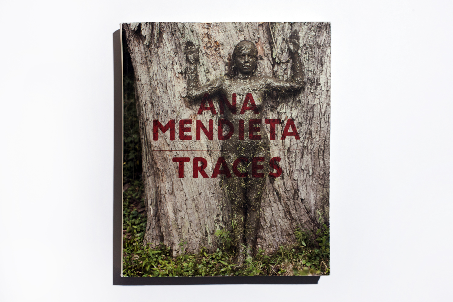 Traces by Ana Mendieta, published by Hayward Publishing, selected by Anne-Celine Jaeger, author