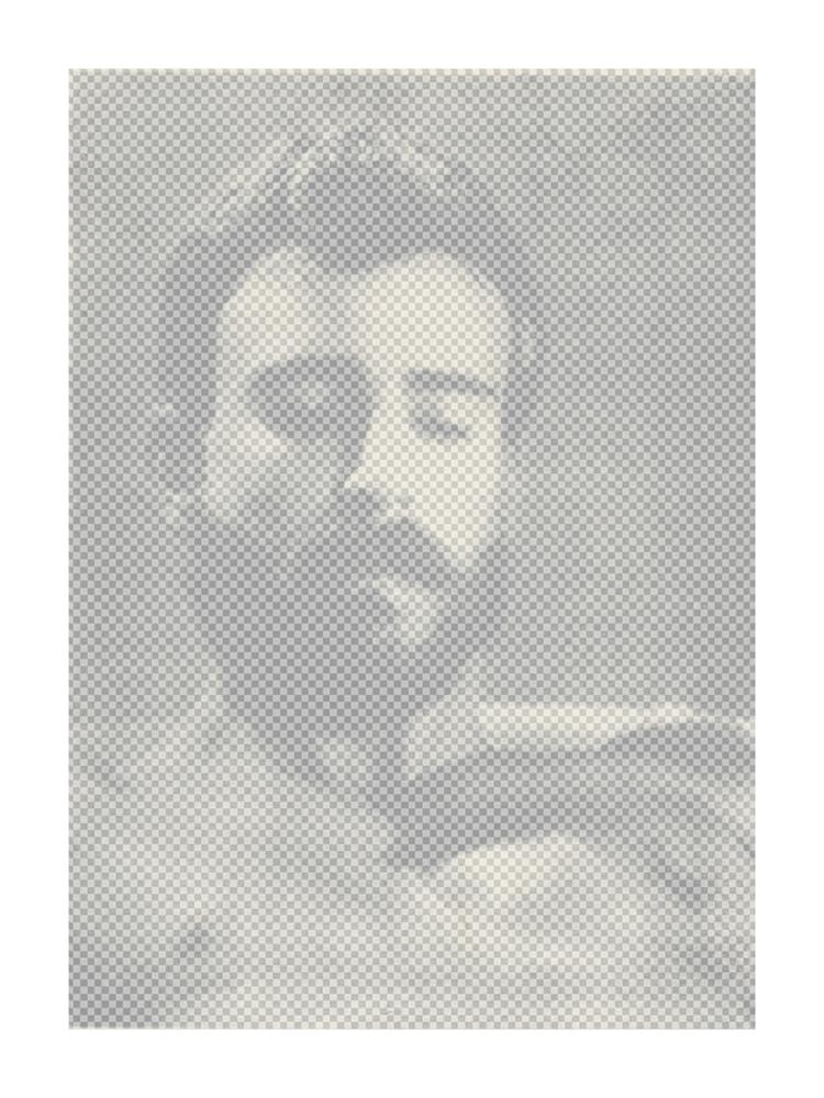 Transparent Portrait, 2013