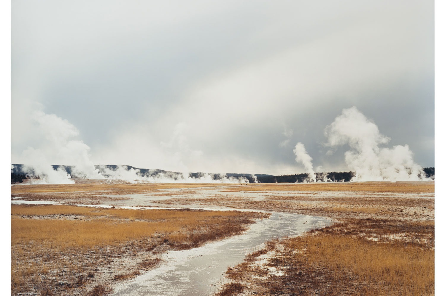 Untitled (Distant steam vents), Yellowstone National Park, 2008