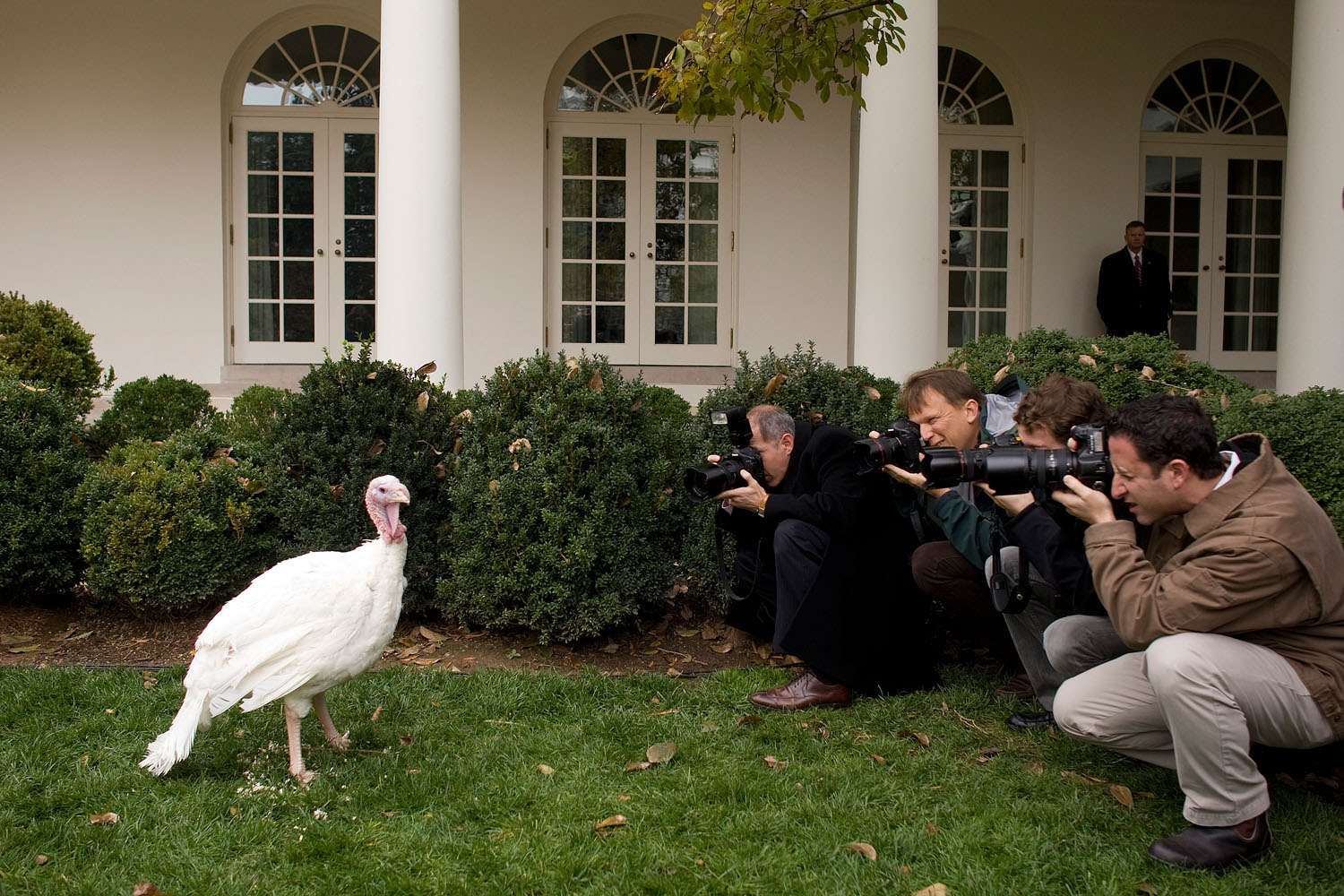 Photographers shoot pictures of  May  before the pardon of the National Thanksgiving Turkey during a ceremony in the Rose Garden of the White House, November 20, 2007.