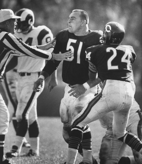 Dick Butkus, 1965 Photos Of The Baddest Rookie The Nfl -2664