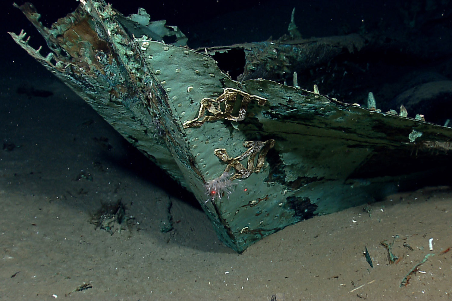 July 24, 2013. In this photo provided by NOAA Okeanos Explorer Program, oidized copper hull sheathing and possible draft marks visible on the bow of a wrecked ship in the Gulf of Mexico about 170 miles from Galveston, Tx.