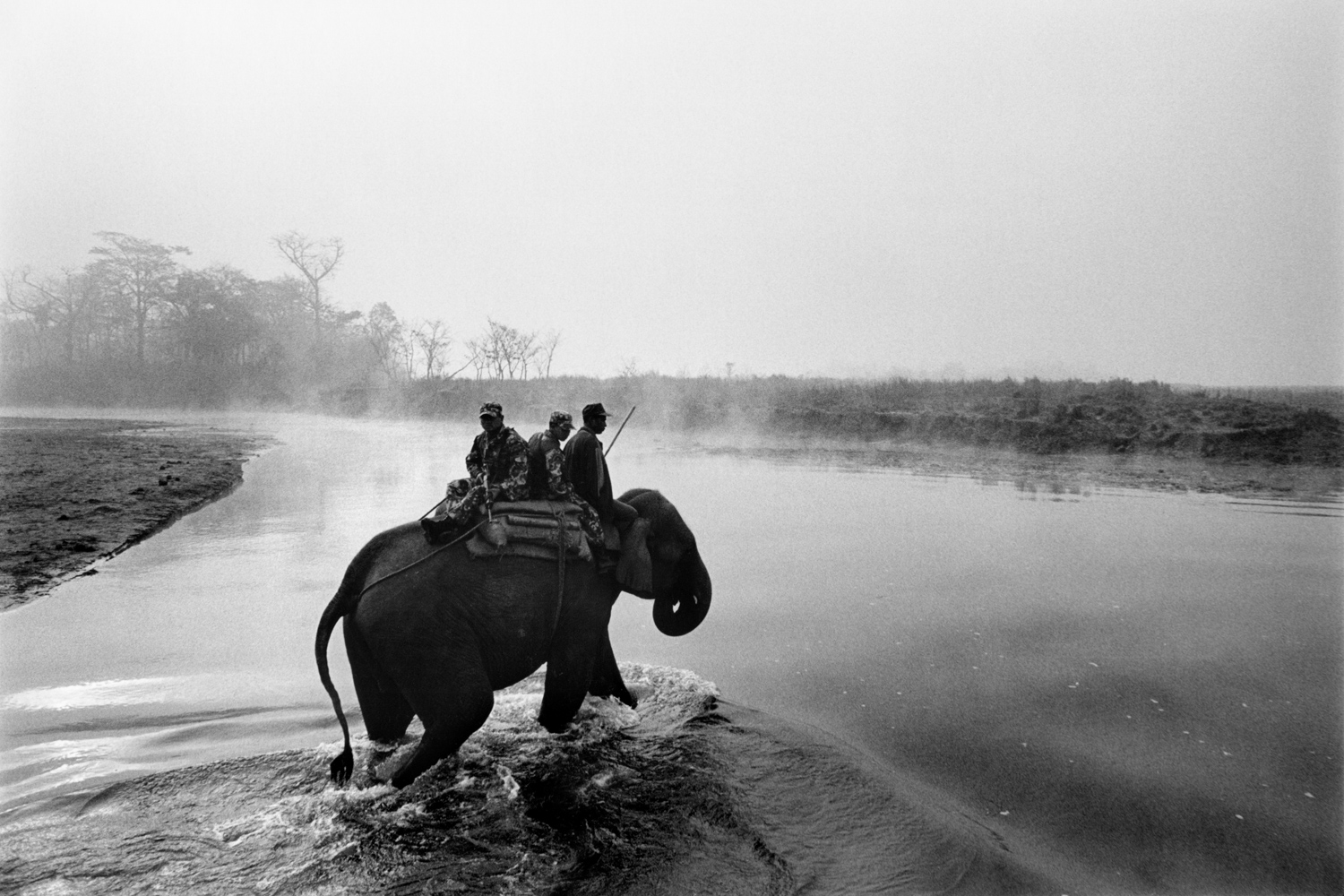 Nepal                                                                                             A small group of Royal Nepalese soldiers riding elephants patrol Chitwan National Park at dawn.