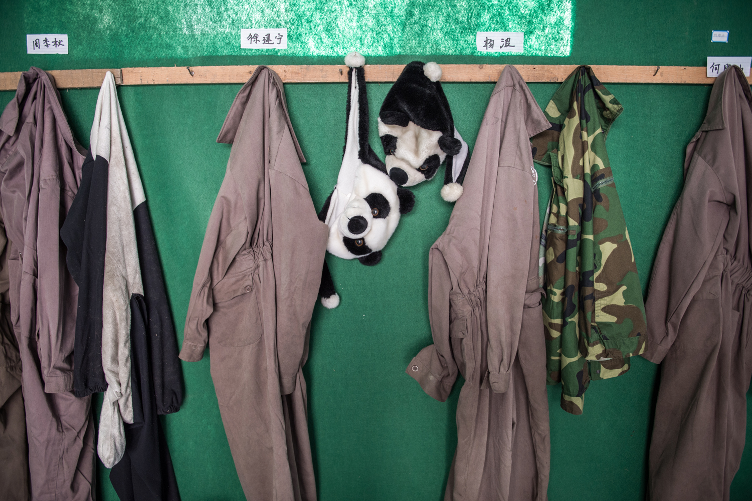 Panda costumes hang at the Wolong National Nature Reserve. Anyone who interacts with pandas slated for release into the wild must do so in disguise.
