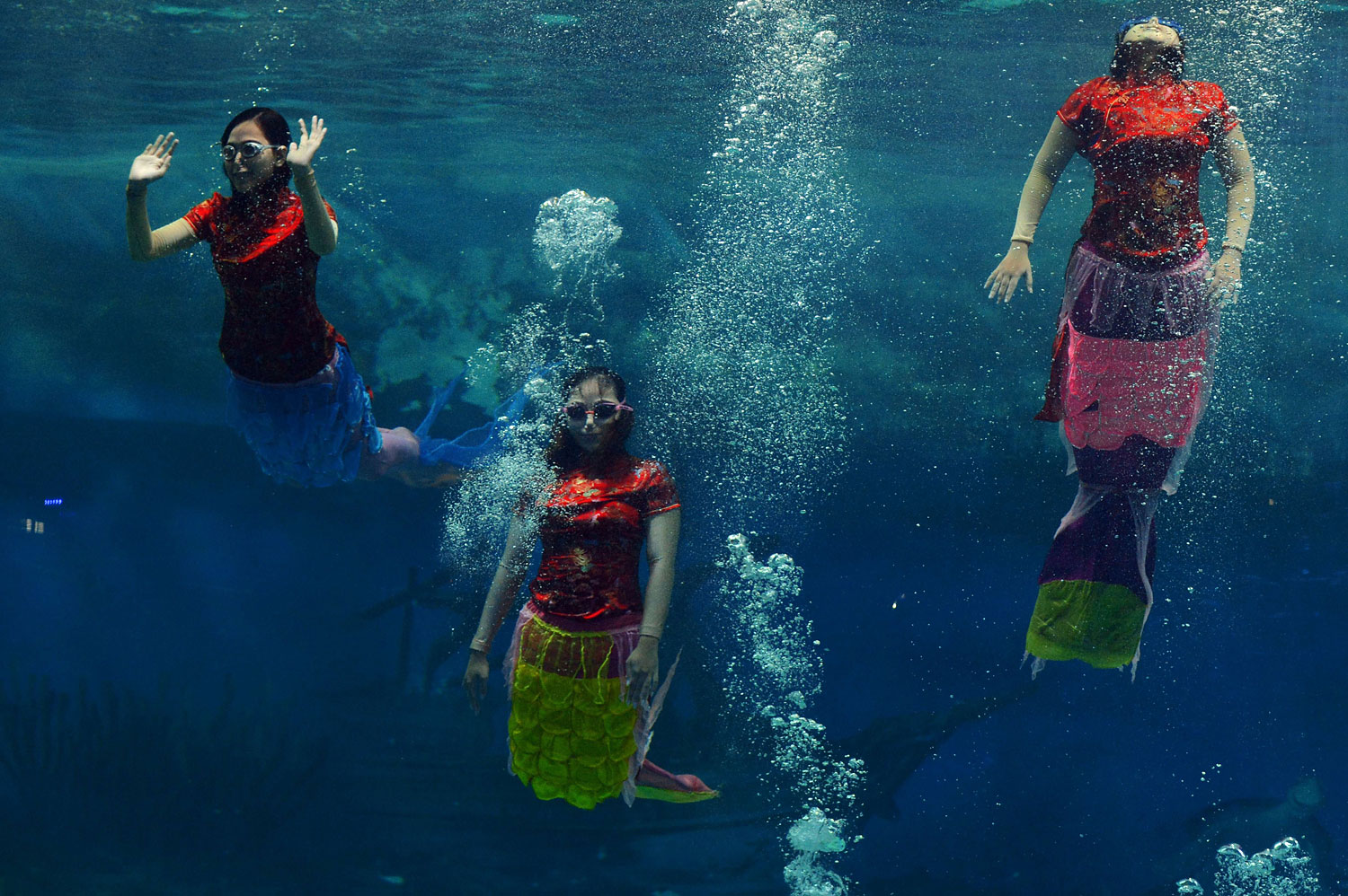 Indonesian performers dressed as mermaids wearing traditional Chinese cheongsam dress perform underwater in a special program celebrating the Lunar New Year at Jakarta's Ancol park on Jan. 31, 2014.
