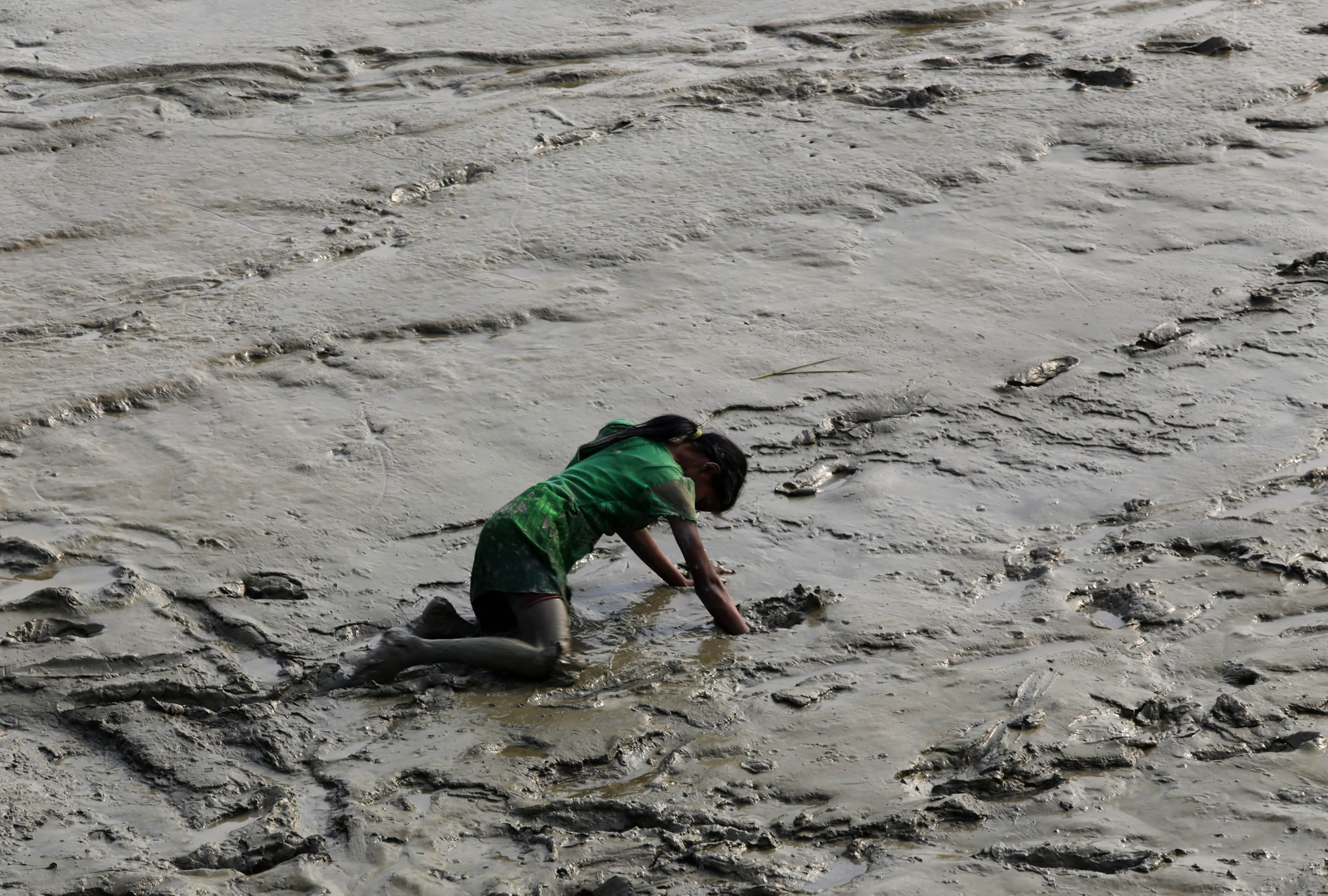 An Indian girl tries to pick up a coin in the mud of the Ganges River at Harwood point, 90 kms south of Calcutta, eastern India, Jan. 12, 2014. Coins were offered by pilgrims on their way to take a holy dip at Gangasagar for the upcoming Gangasagar annual fair.