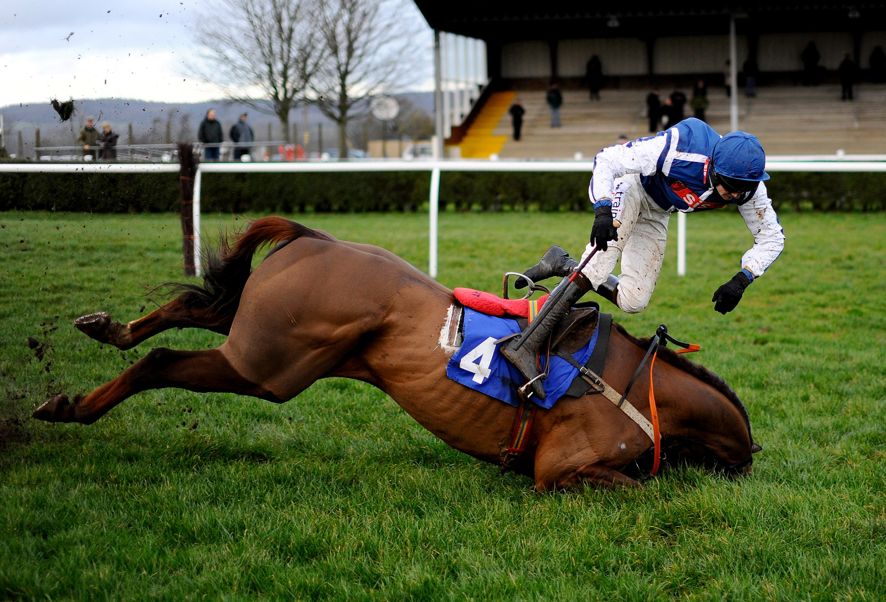Brendan Powell falls from Flaming Charmer in the Higos Insurance Services Street Novices' Limited Handicap Steeple Chase in Wincanton, England, Jan. 16, 2014.