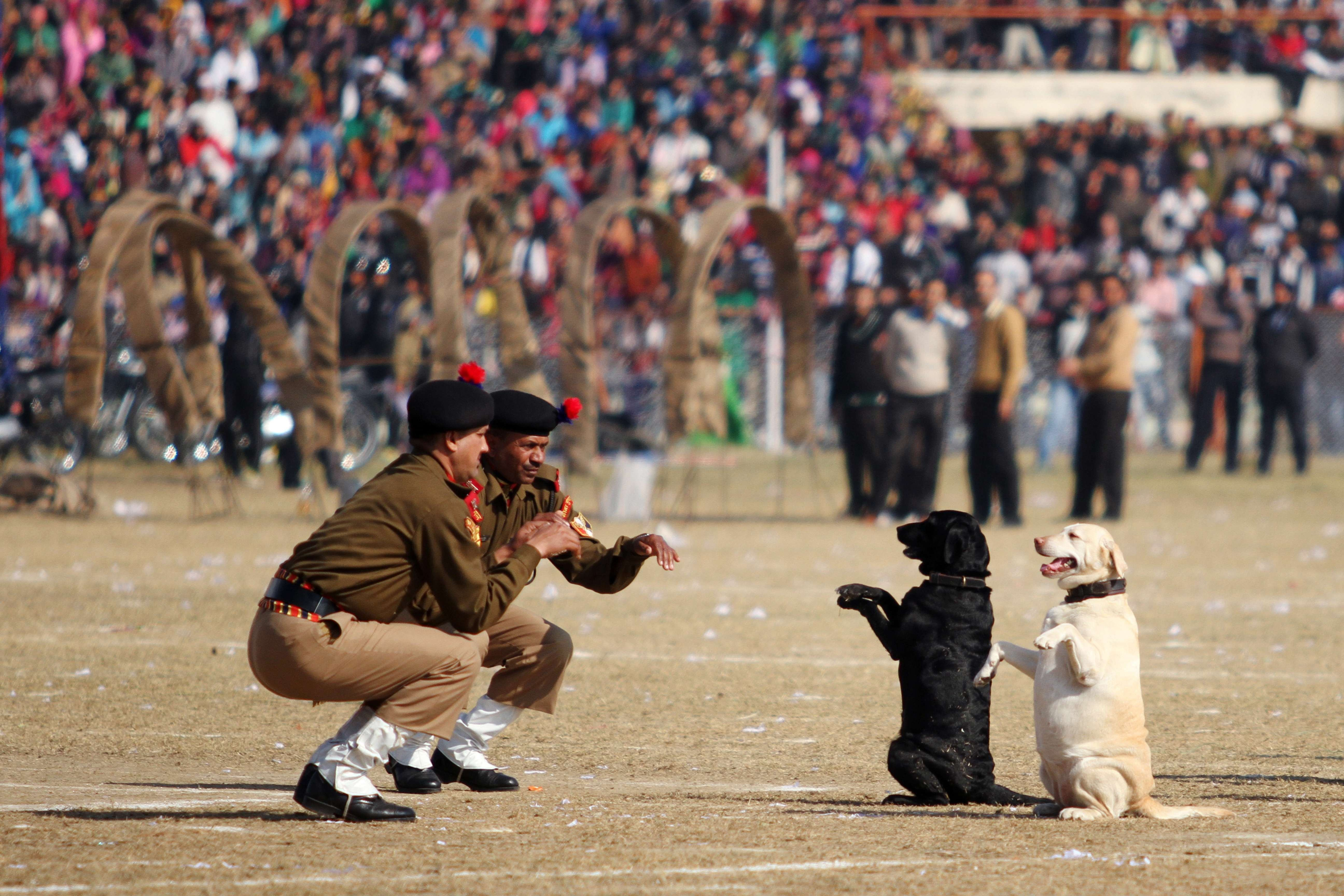 Indian Border Security Force dog squad personnel take part in a march during Republic Day celebrations in Jammu, India, Jan. 26, 2014.
