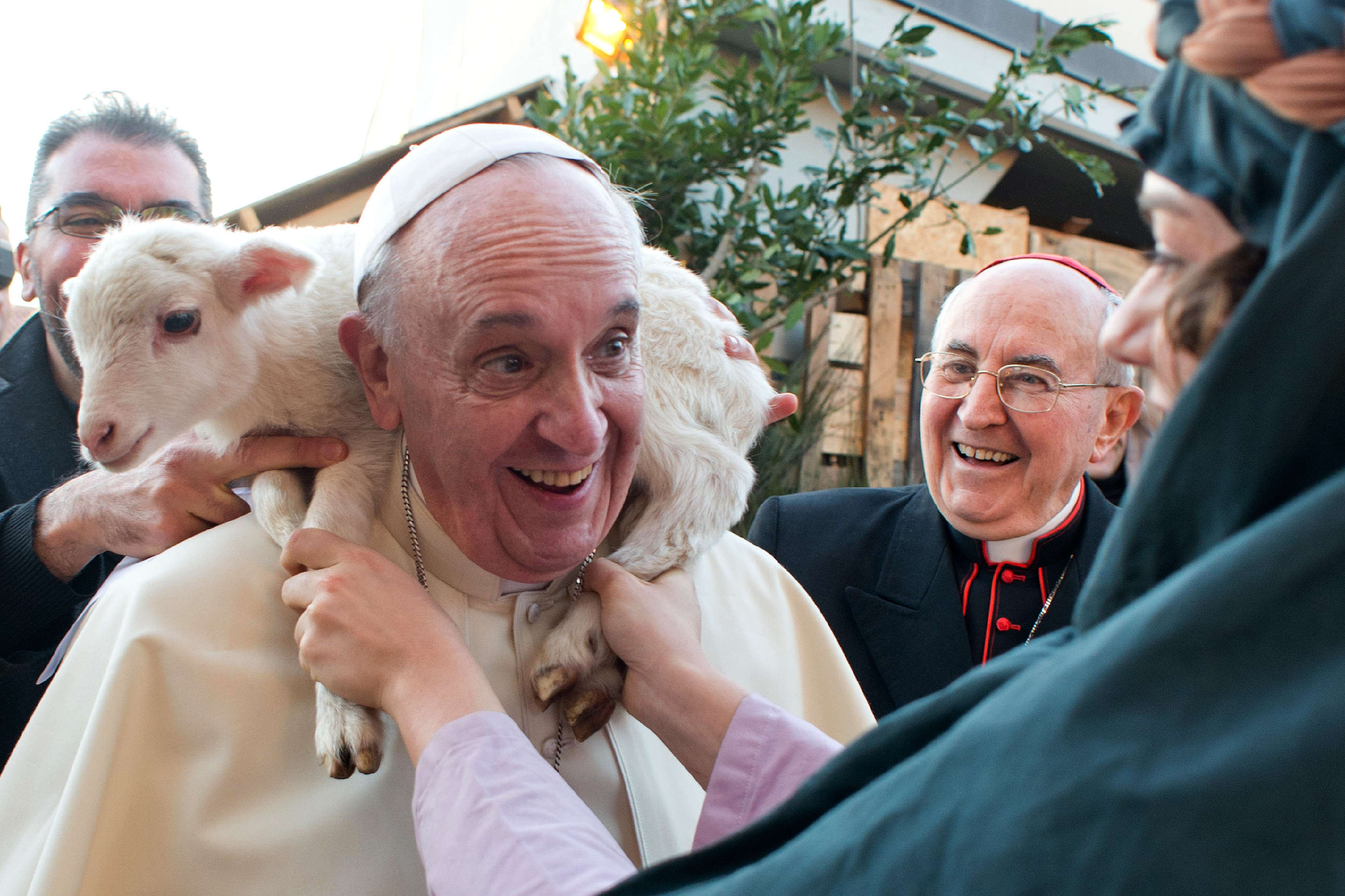 This handout picture released on Jan. 6, 2014 by the Vatican press office shows Pope Francis carrying a lamb on his shoulders as he visits the parish of the Sant'Alfonso Maria de Liguori during Epiphany in Rome.