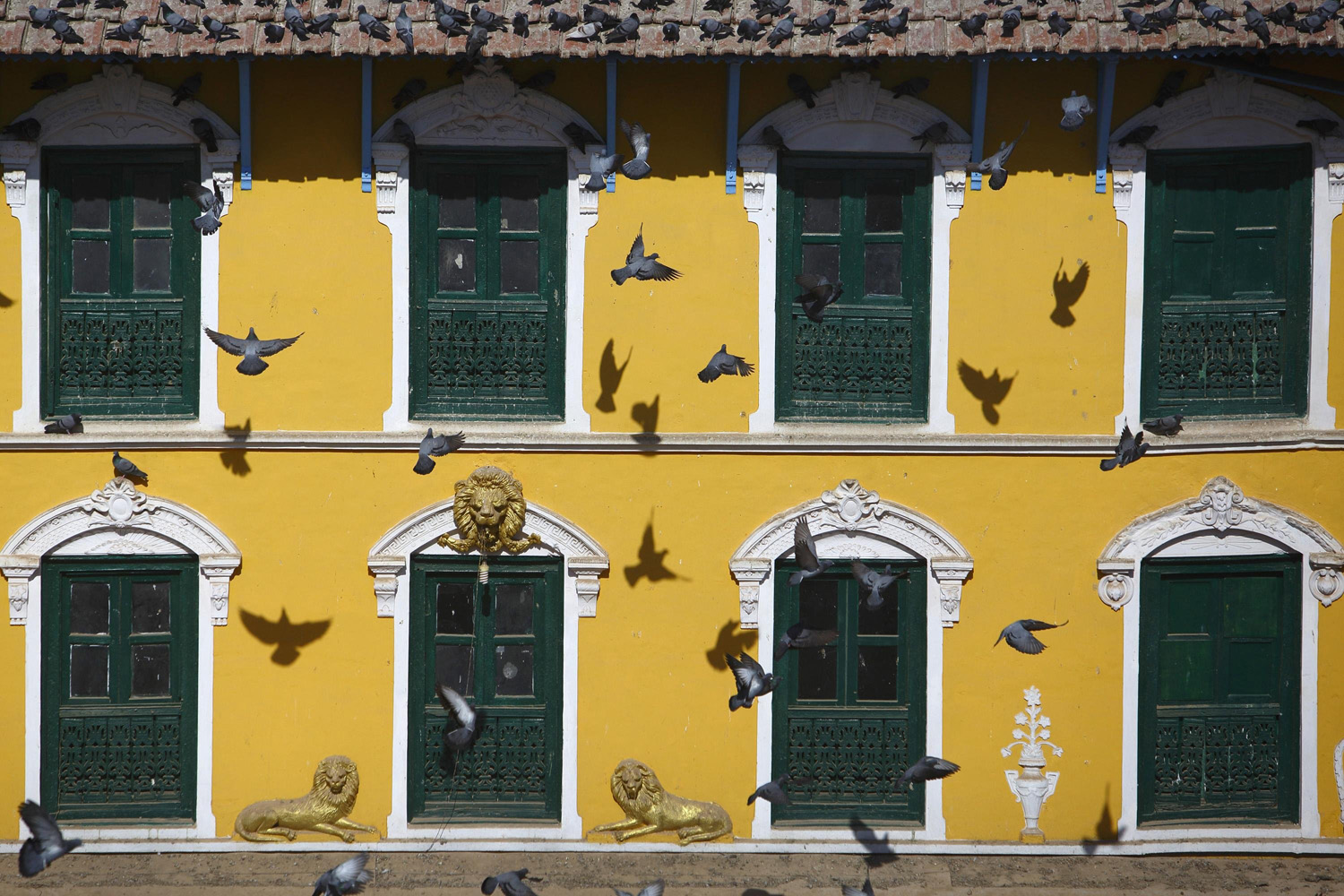 Jan. 1, 2014. Flying pigeons cast shadows on the wall an old house built in front of the Boudhanath Stupa in Kathmandu, Nepal.