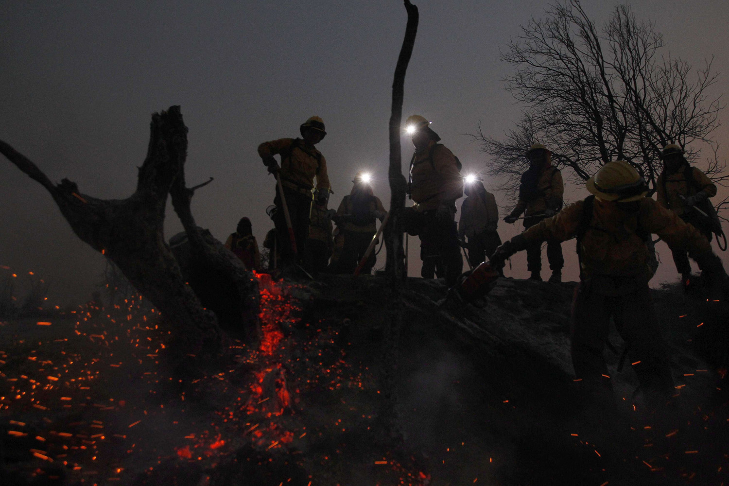 Jan. 7, 2014. Workers from Chile's National Forestry Corporation (CONAF) inspect a burned area during a forest fire in the rural town of Melipilla at Bollenar area, about 71 km (44 miles) southwest of Santiago.