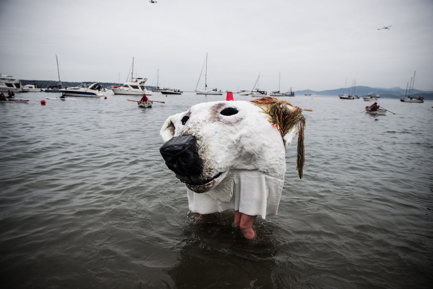 Jan. 1, 2014. Two participants wearing a polar bear costume take part in the 94th annual New Year's Day Polar Bear Swim in Vancouver, B.C., Canada.