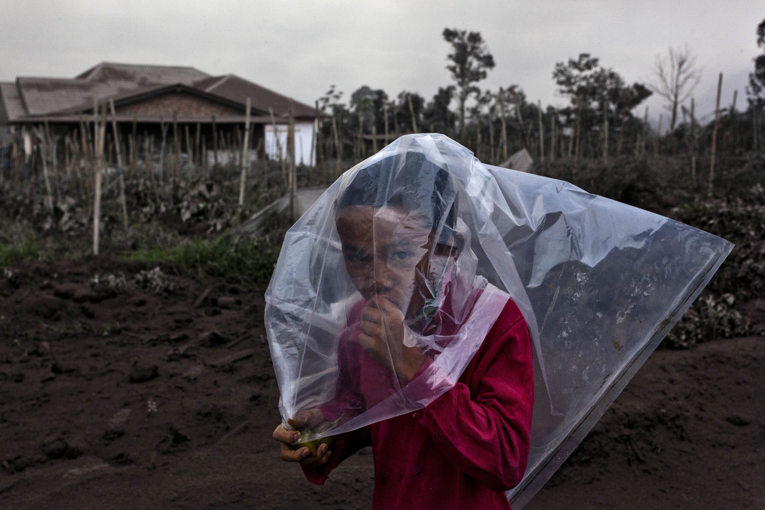Jan. 4, 2014. A boy wears a plastic bag to cover his face from ash following a further eruption of the Mount Sinabung in Karo District, North Sumatra, Indonesia.