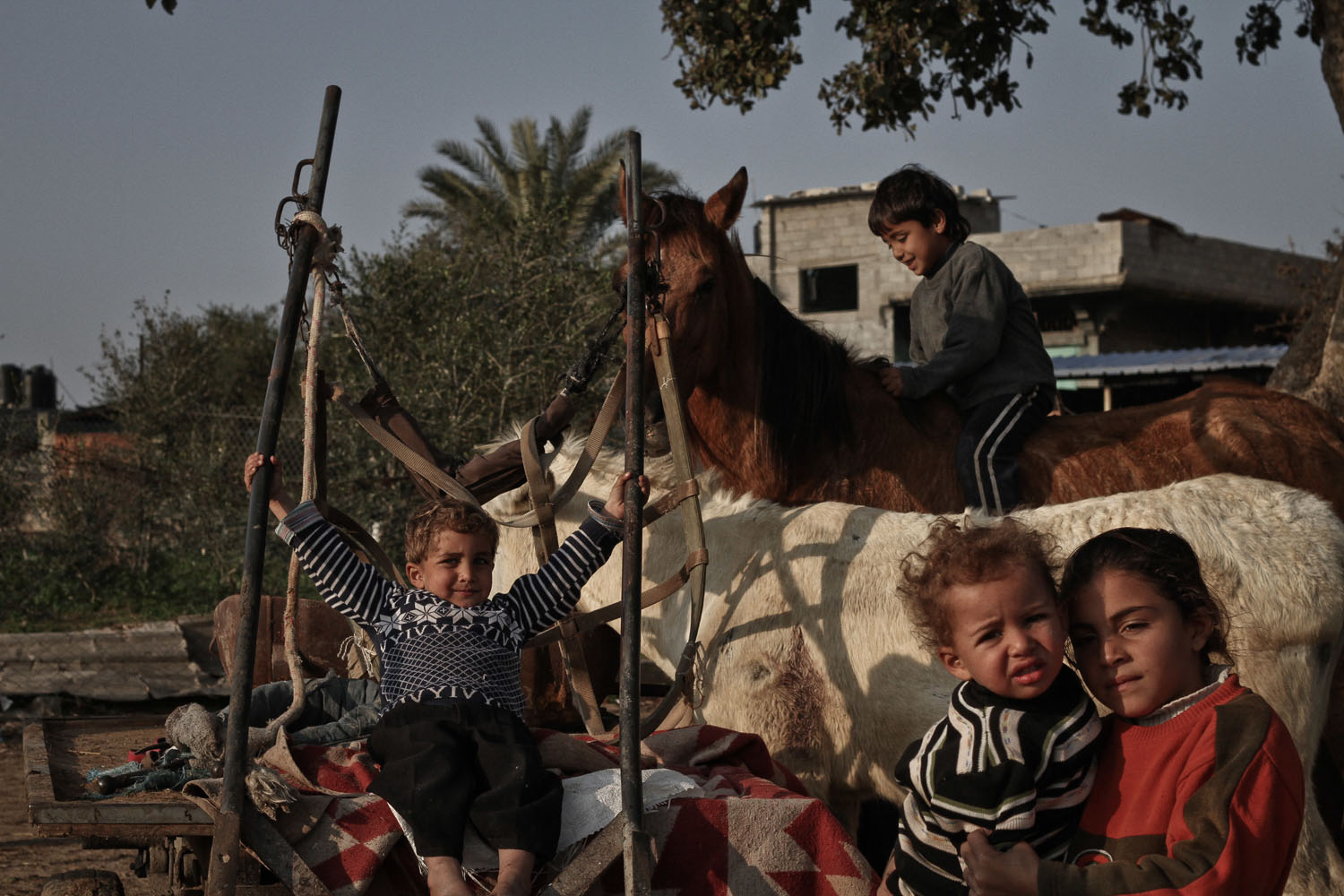 Jan. 5, 2014. Palestinian children play in front of their family's house in Beit Lahiya, a town in northern Gaza Strip.
