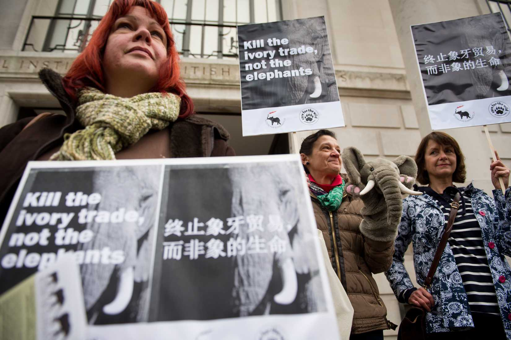 A protester with a banner displaying Chinese characters joins a demonstration outside the Chinese embassy in London, on Jan. 25, 2014, to call for an end to the ivory trade in China.
