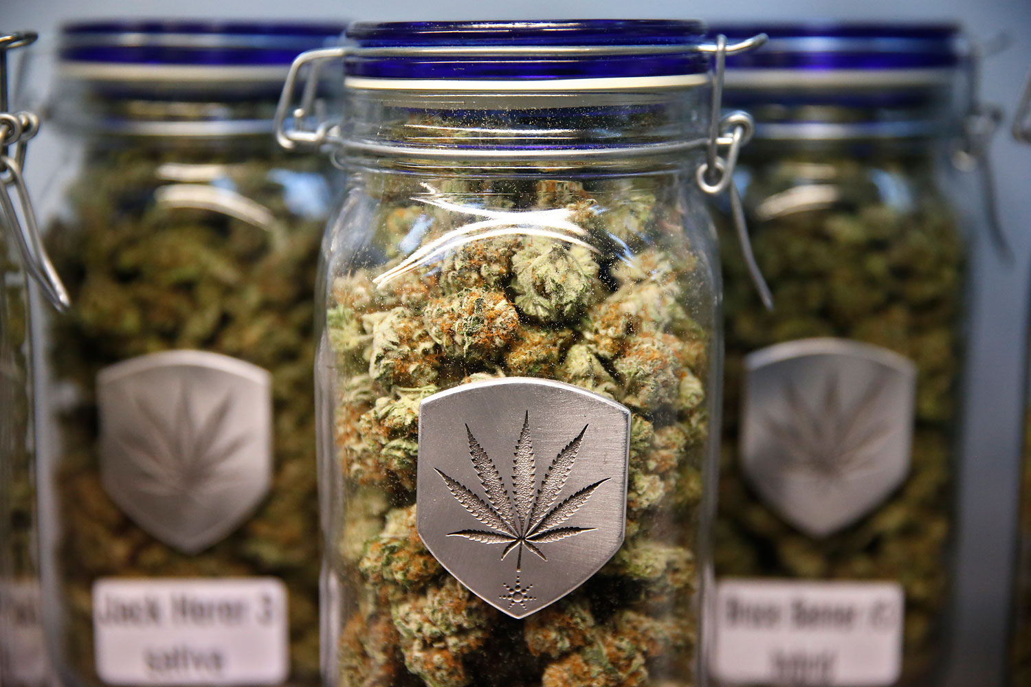 Different strains of pot are displayed for sale at Medicine Man marijuana dispensary in Denver on Dec. 27, 2013.